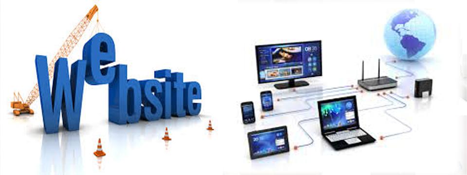 WEB & NETWORK
